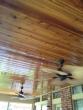 middleton-ceiling
