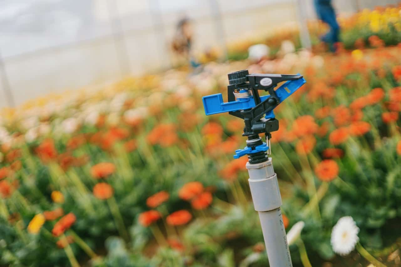 The Benefits Of An Auto Watering System