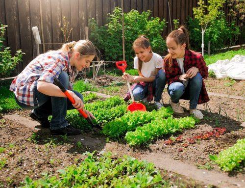 Gardening in Houston With Kids