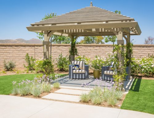 How To Maintain And Clean Your Pergola?