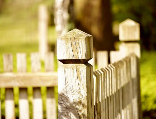 What Do You Need to Know About Wooden Fences?